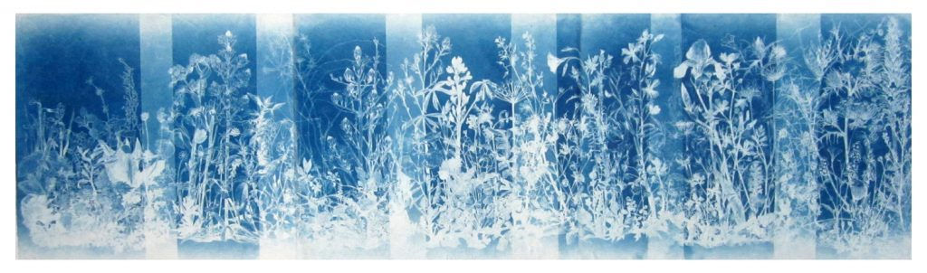 They Paved Paradise, Cyanotype on mulberry paper, 42 x160 cm